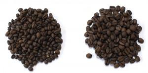 coffee_pibery_hikaku